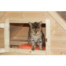 Etanas Katzenvilla für innen und aussen geeignet